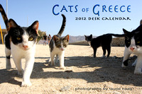 Cats of Greece 2012